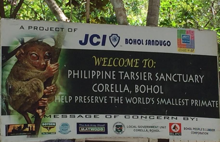 Philippine Tarsier Sanctuary (image)