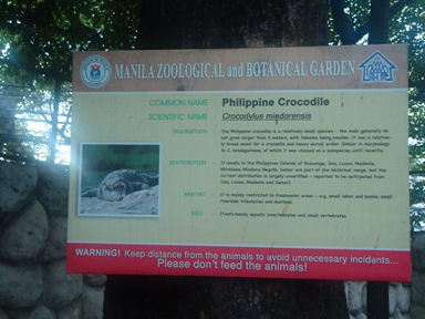 Philippine crocodile noticeboard (photo)